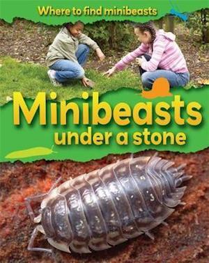 Minibeasts Under a Stone af Sarah Ridley