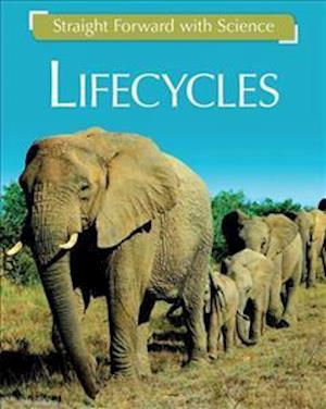 Life Cycles af Peter D. Riley