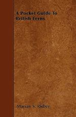 A Pocket Guide to British Ferns af Marian S. Ridley
