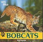 Bobcats af Henry Randall