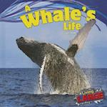 A Whale's Life (Living Large)