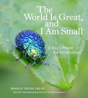 Bog, hardback The World Is Great, and I Am Small af Bradley Trevor Greive