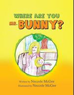Where Are You Mr. Bunny?