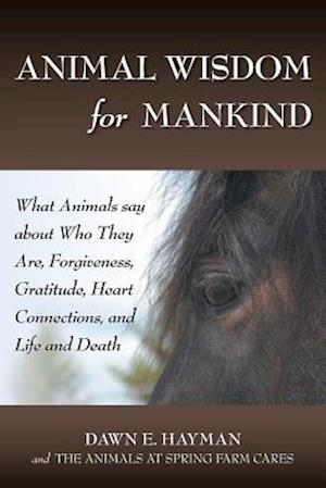 Bog, paperback Animal Wisdom for Mankind af Dawn E. Hayman