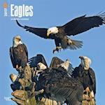 Eagles 2017 Calendar