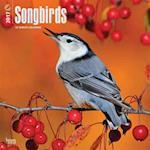Songbirds 2017 Calendar