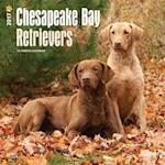 Chesapeake Bay Retrievers 2017 Calendar