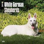 White German Shepherds 2017 Calendar