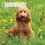 Goldendoodles 2017 Calendar