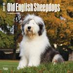 Old English Sheepdogs 2017 Calendar