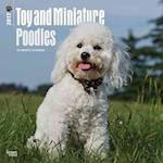 Toy and Miniature Poodles 2017 Calendar