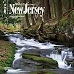 Wild & Scenic New Jersey 2017 Calendar