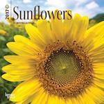 Sunflowers 2017 Calendar