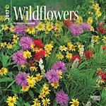 Wildflowers 2017 Calendar