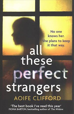 All These Perfect Strangers af Aoife Clifford