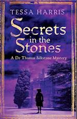 Secrets in the Stones (Dr. Thomas Silkstone Mysteries)