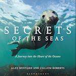 Secrets of the Seas
