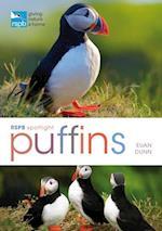 RSPB Spotlight: Puffins (RSPB)