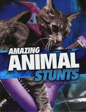 Amazing Animal Stunts af Lisa M. Bolt Simons