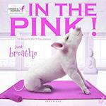 In the Pink! 2017 Calendar