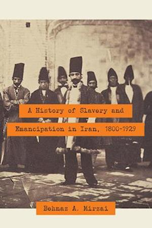 Bog, paperback A History of Slavery and Emancipation in Iran, 1800-1929 af Behnaz A. Mirzai