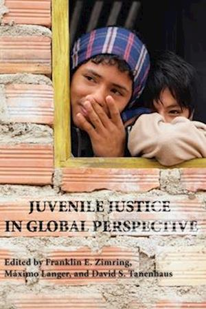 Bog, paperback Juvenile Justice in Global Perspective