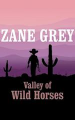 Valley of Wild Horses (nr. 8)