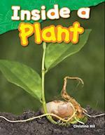 Inside a Plant af Christina Hill
