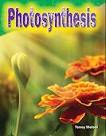 Photosynthesis af Torrey Maloof