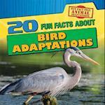 20 Fun Facts about Bird Adaptations (Fun Fact File Animal Adaptations)