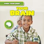 Your Brain (Know Your Body)