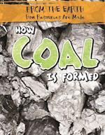 How Coal Is Formed (From the Earth How Resources Are Made)