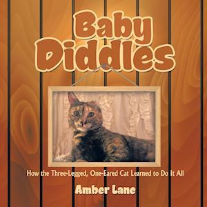 Bog, paperback Baby Diddles af Amber Lane