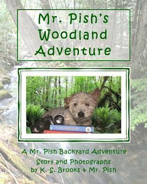 Bog, paperback Mr. Pish's Woodland Adventure af K. S. Brooks, MR Pish