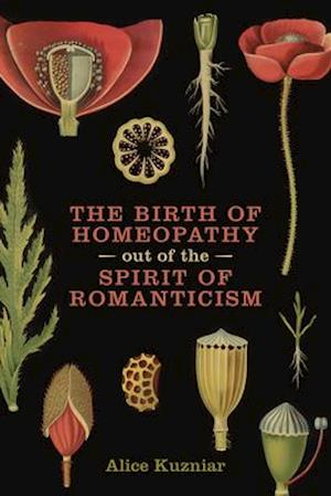 Bog, paperback The Birth of Homeopathy Out of the Spirit of Romanticism af Alice Kuzniar