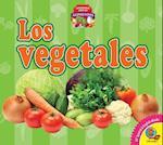 Los Vegetales (Vegetables) (Aprendamos Sobre Los Alimentos Lets Learn about Food)