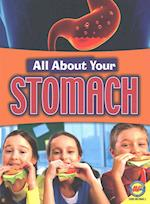 Stomach (All About Your. . )