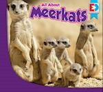 All about Meerkats (Eyediscover)