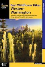 Best Wildflower Hikes Western Washington