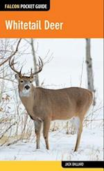 Whitetail Deer (Falcon Pocket Guides)