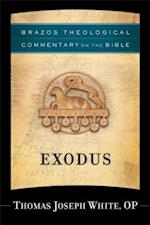 Exodus (Brazos Theological Commentary on the Bible) (Brazo's Theological Commentary on the Bible)