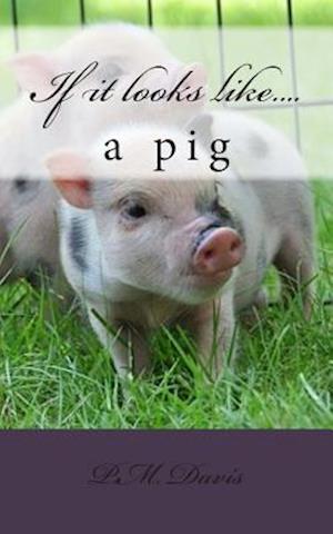If It Looks Like....a Pig af P. M. Davis