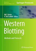 Western Blotting af Biji T. Kurien