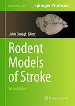 Rodent Models of Stroke (NEUROMETHODS, nr. 120)