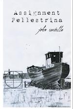 Assignment Pellestrina af John Costella