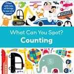 Counting (What Can You Spot)