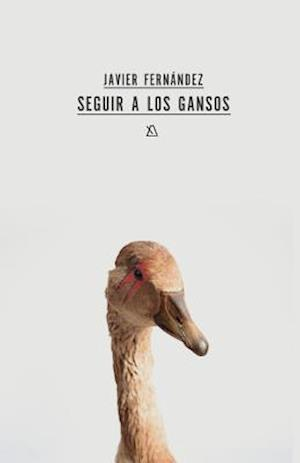 Seguir a Los Gansos af Javier Fernandez