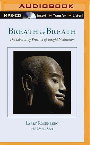 Breath by Breath af Larry Rosenberg