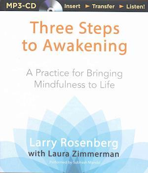 Three Steps to Awakening af Larry Rosenberg