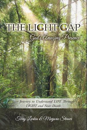 Bog, paperback The Light Gap af Marjorie Steiner, Terry Larkin
